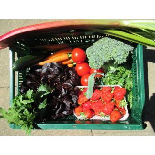 Gemüse-Obst-Kiste   klein