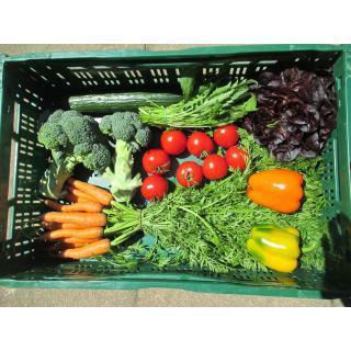 Gemüsekiste groß