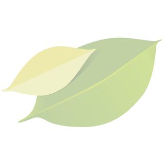 "Powerkiste ""Obst & Gemüse"" groß"